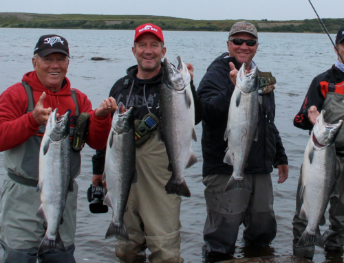 Optimizing Travel & Fishing Time With Becharof Lodge On The Egegik River
