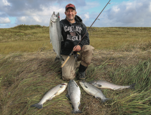 Coho Salmon Fishing In Alaska